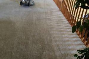 Photo #1: Green Carpet Cleaning