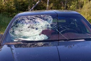 Photo #1: ALL ABOUT AUTO GLASS, WINDSHIELD REPLACEMENT