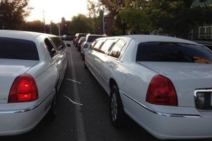 Photo #1: White stretch Limo 12 passenger to Rent