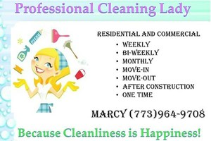 Photo #1: Professional Cleaning Lady,Cleaning Service, Residential or Commercial