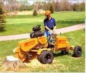 Photo #1: Patrick's Stump Grinding and Stump Removal