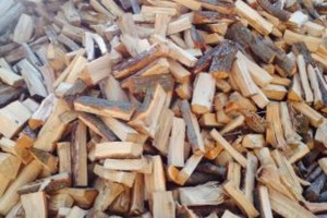 Photo #1: Firewood split and delivered 175 a cord