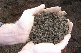Photo #1: Loam screened at half inch and delivered  $16