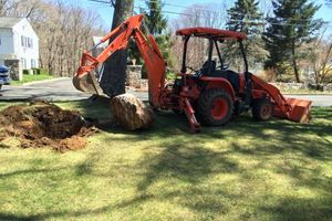 Photo #1: Tree Stump Removal-Tree Removal-Landscaping