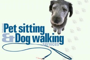 Photo #1: Sara's Dog Walking / Pet Sitting / Insured