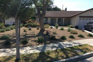 Photo #1: Sod removal for only $.30 per square ft