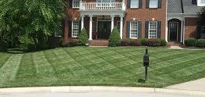 Photo #1: Kocourek Landscaping - perfessional landscaping (paver cleaning, spring/fall clean ups)