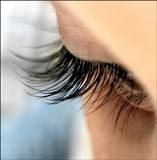 Photo #1: Eyelash Extension. Indivdual lashes.