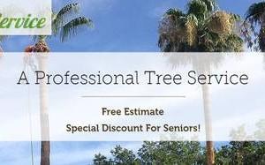 Photo #1: ENRIQUE'S TREE SERVICE