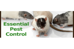 Photo #1: Say So Long to Pests for Good!