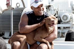 Photo #1: Brandon Fouche - Dog Aggression Expert