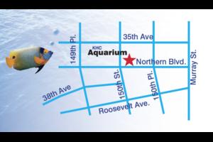 Photo #1: KHC Aquarium