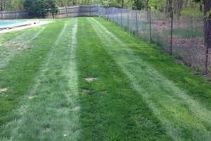 Photo #1: Lawn maintenance and mulch
