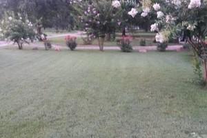 Photo #1: Mark's Lawn Care