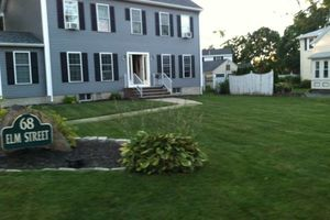 Photo #1: Landscaping and all yard cleanups for cheap