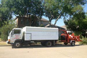 Photo #1: LUSIO's PROFESSIONAL TREE SERVICE
