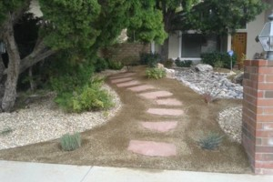 Photo #1: Landscape design/ Maintenance