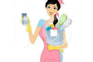 Photo #1: Domestic Cleaning Services