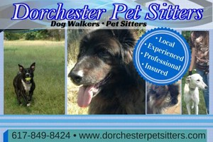 Photo #1: Personalized dog walking - Family owned and operated