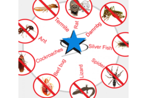 Photo #1: Get Rid, Termite and Pest Control Services