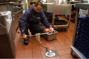 Photo #1: Standard Pest Management