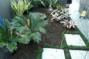 Photo #1: Landscaping & gardening