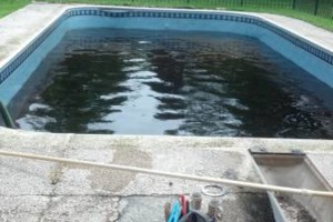 Photo #1: Pool repair - best rates!