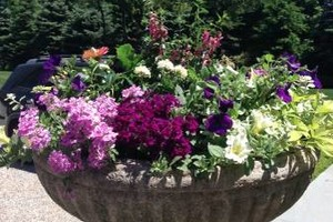 Photo #1: FloraScapes - Distinctive, Fine Garden Design and Care