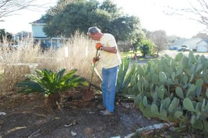 Photo #1: Flower bed work, raised beds & agaves