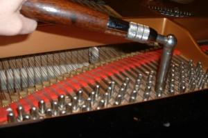 Photo #1: Piano Tuning starting at $100