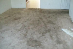 Photo #1: Aames Steam Carpet & Upholstery Cleaning
