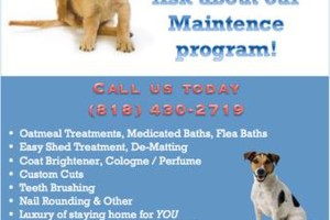 Photo #1: Trusted #1 Mobile Dog Groomer! - SAM`S MOBILE GROOMING