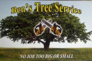 Photo #1: Ben's Tree Service