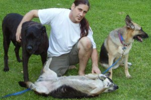Photo #1: Dog Trainer Specializing in Socialization Training 4 Dogs