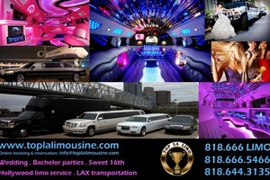 Photo #1: Limousine service : Concerts, Festivals, Events, Hollywood night out