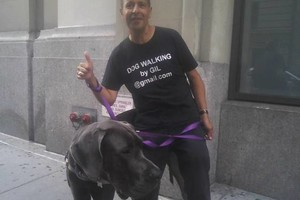 Photo #1: Chelsea Professional Dog Walking (Chelsea, Greenwich Village, Midtown)