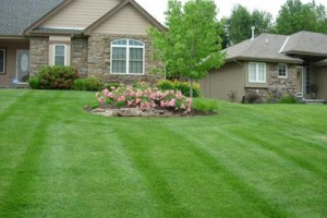 Photo #1: AFFORDABLE LAWNCARE!! $25.00 AND UP