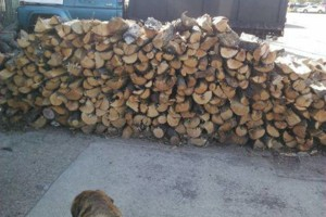 Photo #1: FIREWOOD deliverered or pickup - $75 1/4 cord