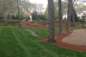 Photo #1: FALL CLEAN-UP and MULCHING