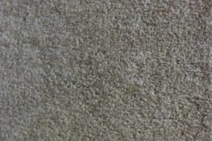 Photo #1: LOW-COST Mohawk carpet with Scotchgard installed