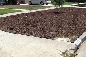 Photo #1: Drought Tolerant Yard installations