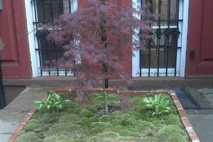 Photo #1: JS Gardens - landscaping services for you!