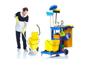 Photo #1: Organization, Laundry, Garbage removal, Kitchen cleaning. One call cleans it all!