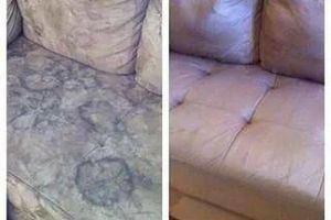 Photo #1: Professional carpet cleaning, upholstery and water damage
