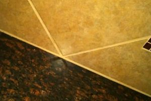 Photo #1: Tile/Grout Sealer
