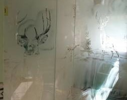 Photo #1: Paragon Glass & Aluminum Corp. Custom Frameless shower doors 3/8 and 1/2 glass