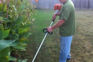 Photo #1: Lawn Care - No Contract Competitive rates, Plano, Richardson. Garland
