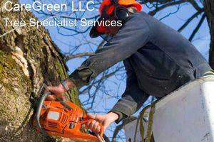 Photo #1: CareGreen LLC. Landscaping Lawn Care, Tree Services & More