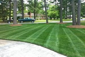 Photo #1: LAWN MOWING / CARE. Low Price!