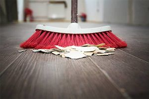 Photo #1: Housecleaner Available to Clean